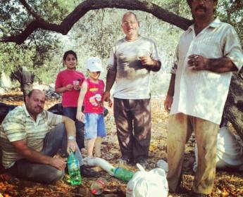 Eine Familie von OlivenbauernOlive Farmers